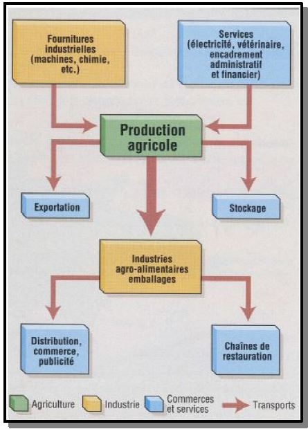 Pourquoi l'agriculture productiviste française est-elle intégrée au secteur industriel ?