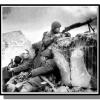 Dans quels lieux se déroulent la bataille de Stalingrad ?