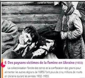 Que provoque la collectivisation en Ukraine ?