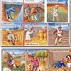 Quelles sont les 3 principales activités agricoles des paysans au Moyen-Age ?